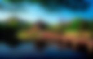 Envios a Corea del sur Express