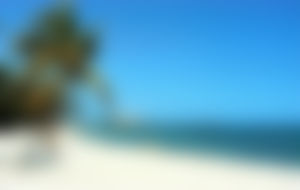 Envios a Cuba Express