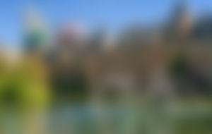 Envios a La Haya baratos