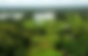 Envios a Laos Express