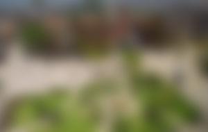Envios a Medellín Express