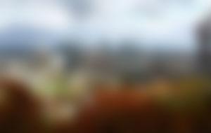 Envios a Montreal baratos