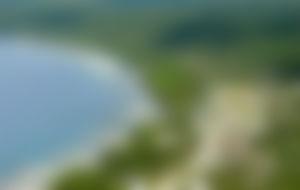 Envios a Niue Express