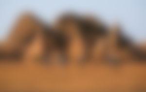Envios a Sudan baratos