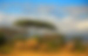 Envios a Tanzania baratos
