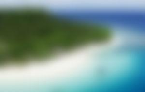 Envios a Tonga Express