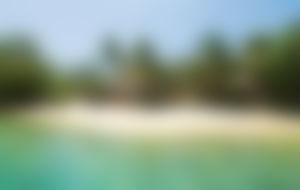 Envios a Vanuatu Express